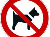 vietato-accesso-cani_p021