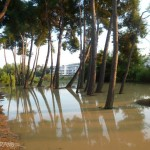 Pineto - alluvione