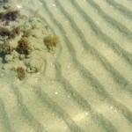 Sandbanks. Zona B dell'AMP
