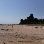 Foto del 26 giugno 2020: la nuova delimitazione protegge la spiaggia di fronte al giardino mediterraneo di Torre Cerrano. I bagnanti passeggiano sulla riva e si godono il paesaggio dominato dalla torre costiera... [Foto di Alberto Miccadei]