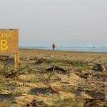 Un'immagine primaverile del confine sud della zona B dell'Area Marina Protetta Torre del Cerrano. [Foto di Francesco Verrocchio]