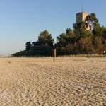 La spiaggia di Torre Cerrano a Pineto al tramonto. Si nota l'impatto del calpestio e non solo sulla spiaggia resa ampia dalle basse maree del periodo. Regolare il flusso turistico di massa è prioritario per un'area di alto pregio ambientale e paesaggistico.